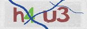CAPTCHA-Sicherheitsprüfung